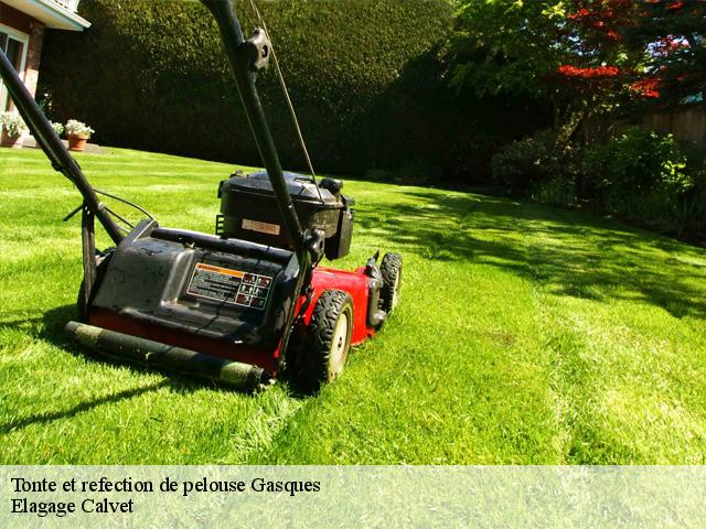 Tonte et refection de pelouse  gasques-82400 Elagage Calvet